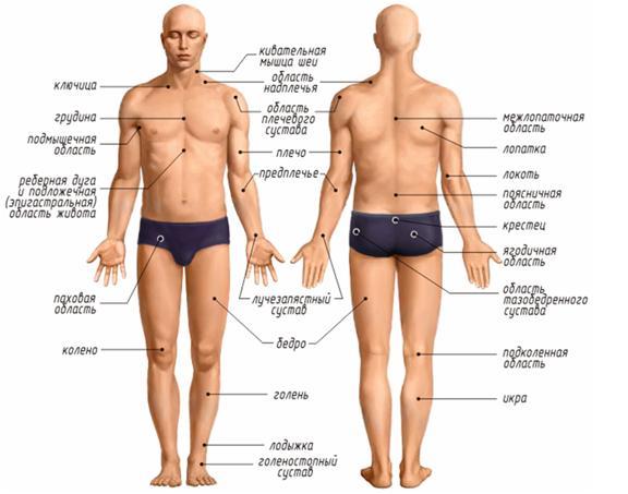 Постоянная боль в левом подреберье и спине